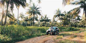 "<img src=""Zanzibary.jpg"" alt=""Rent car Zanzibar"">"