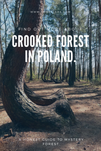 Crooked Forest In Poland It This Forest Really So Magical Twovelers Com,Best Paint For Bathroom Ceiling To Prevent Mold Australia