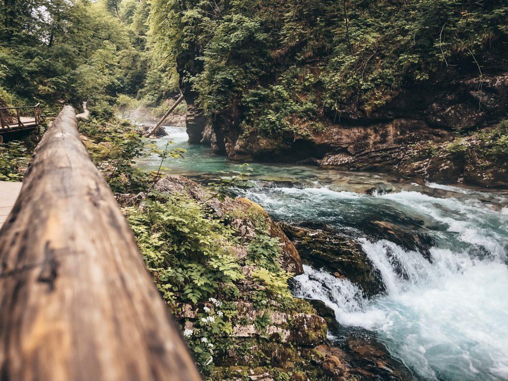 "<img src=""Slovenia Vintgar Gorge.jpg"" alt=""Slovenia road trip twovelers Vintgar Gorge"">"
