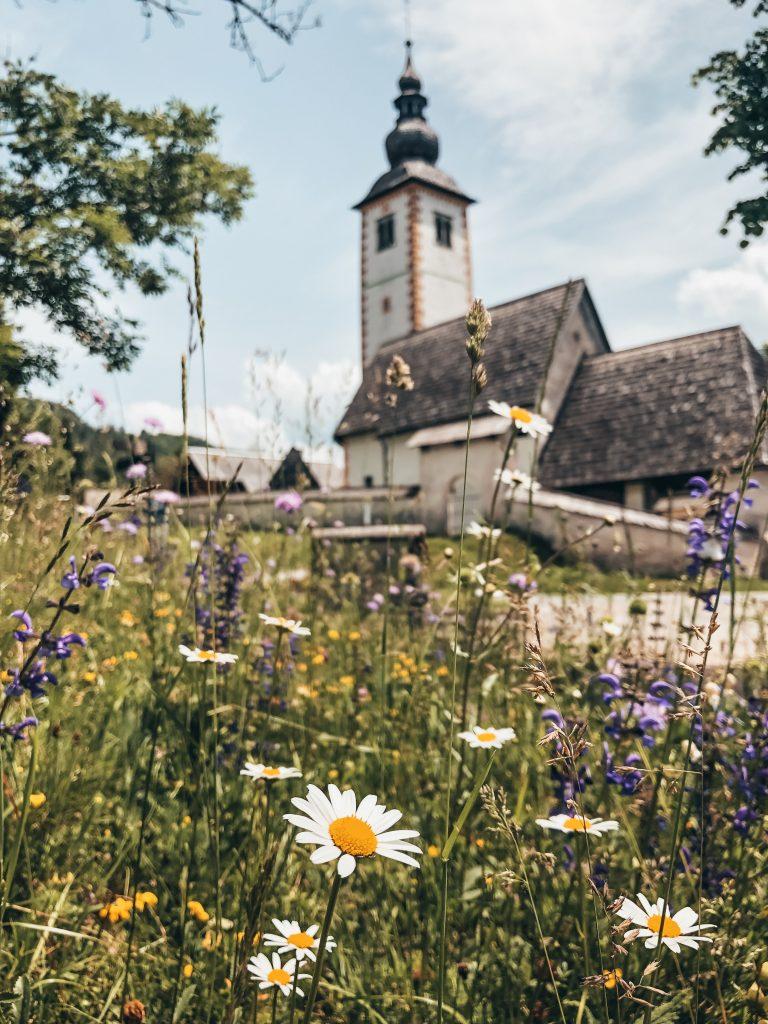 "<img src=""bohinj lake slovenia twovelers.jpg"" alt=""Slovenia road trip twovelers Bohinj jazero"">"