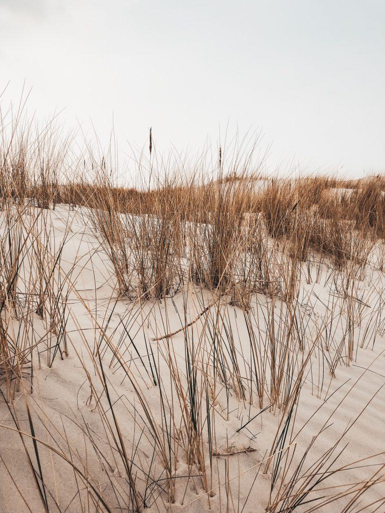 """<img src=""""slowinsky narodny park twovelers guide.jpg"""" alt=""""moving dunes in Poland twovelers"""">"""