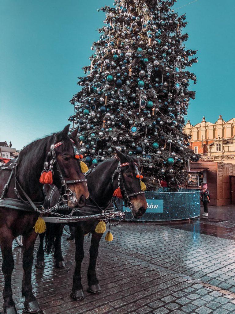 """<img src=""""christmas-market-krakow-twovelers.png"""" alt=""""vianocne trhy v krakowe čo vidiet"""">"""