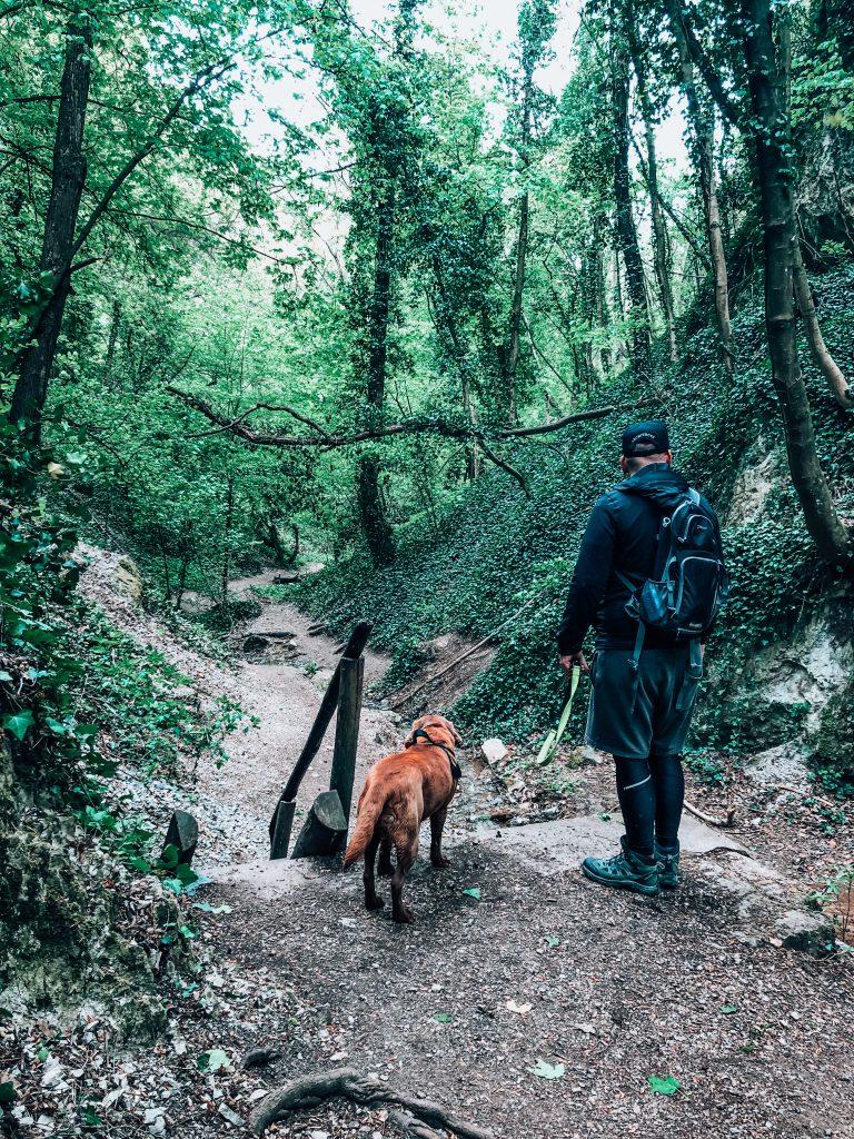 Haluzická tiesňava v lese so psom na turistike