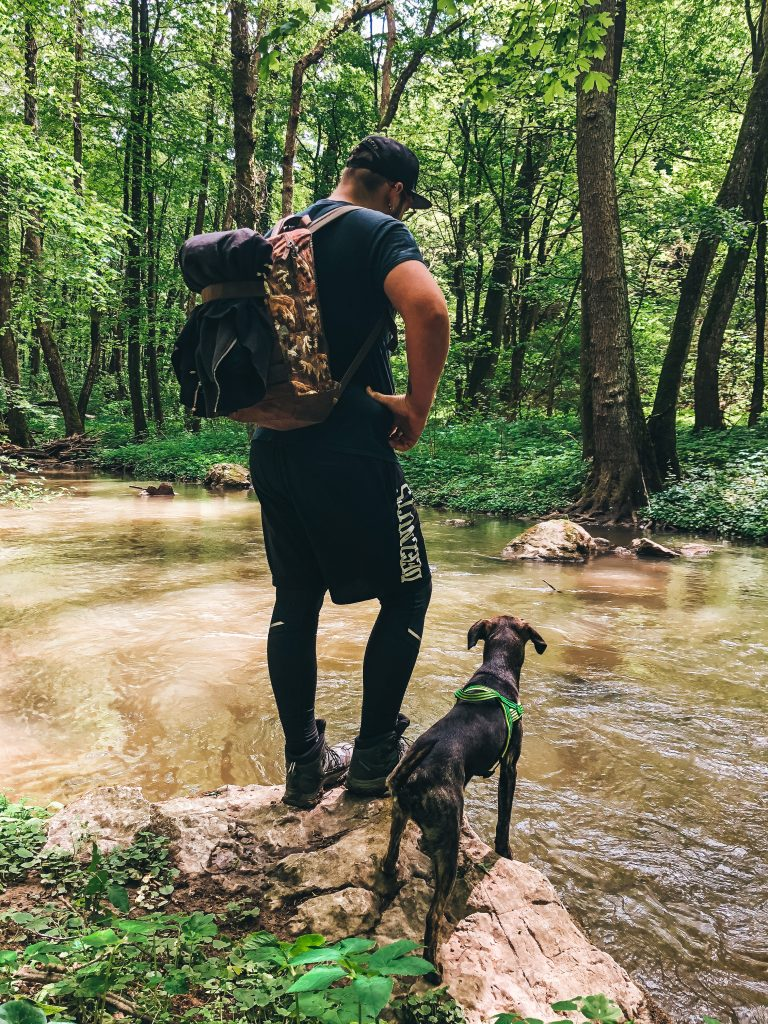 Pes s mužom pri prieke